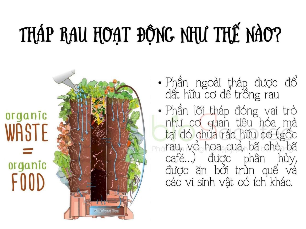 Tháp trồng rau hoạt động như thế nào