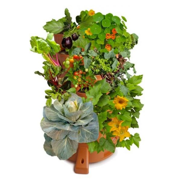 1 tháp trồng rau