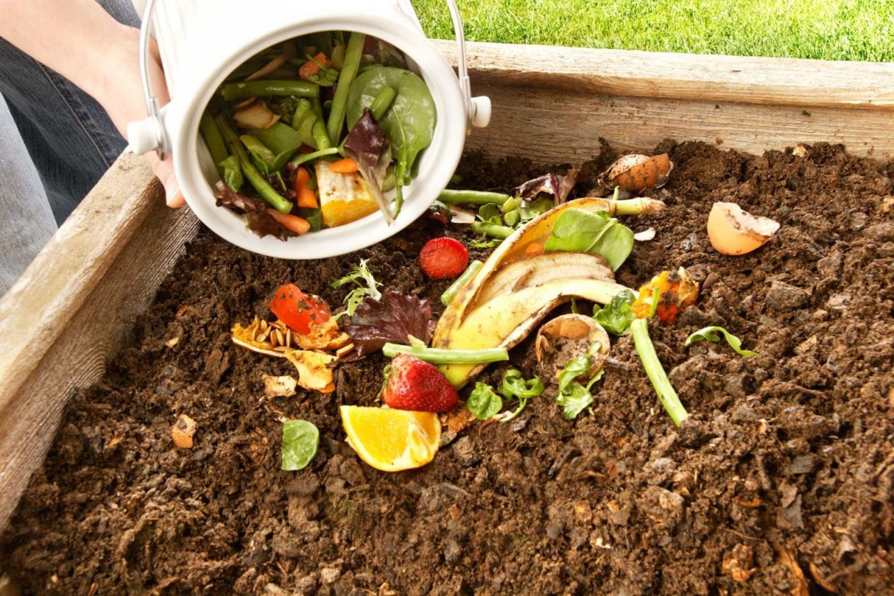 cách làm phân hữu cơ tại nhà