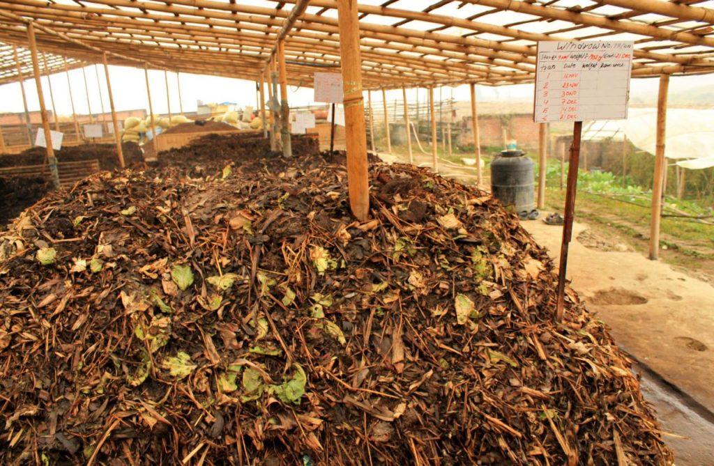 Cách ủ phân hữu cơ vi sinh