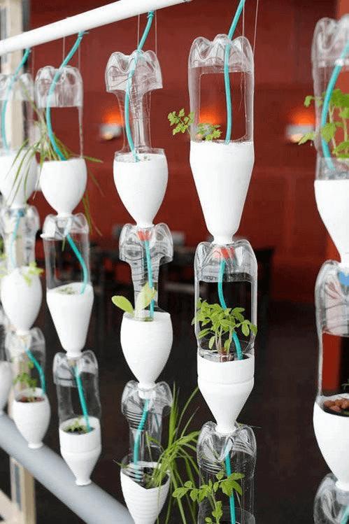 Hệ thống tưới nước tự động trên giàn treo chai nhựa
