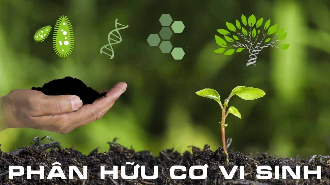 phân hữu cơ vi sinh là gì