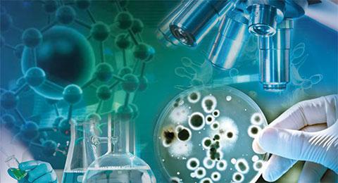 Vi sinh xử lý nước thải là gì