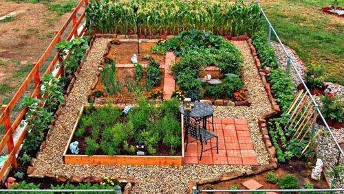 thiết kế vườn rau xen kẽ