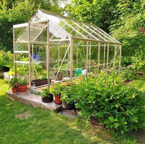 trồng rau sạch bằng lồng kính