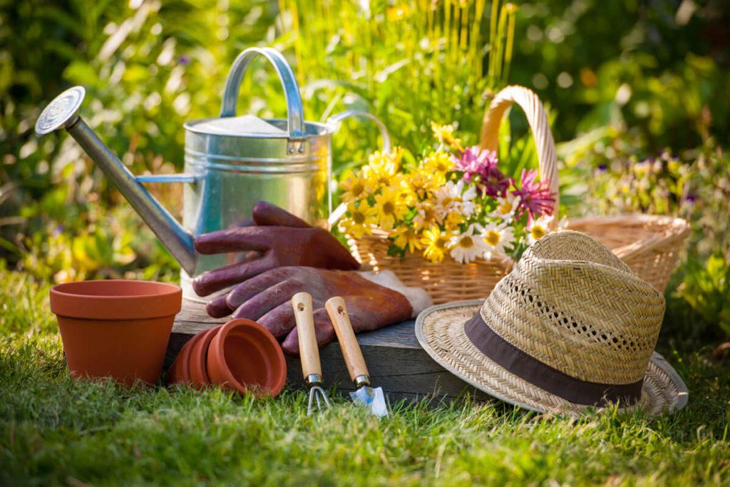 các dụng cụ trồng rau sạch khác