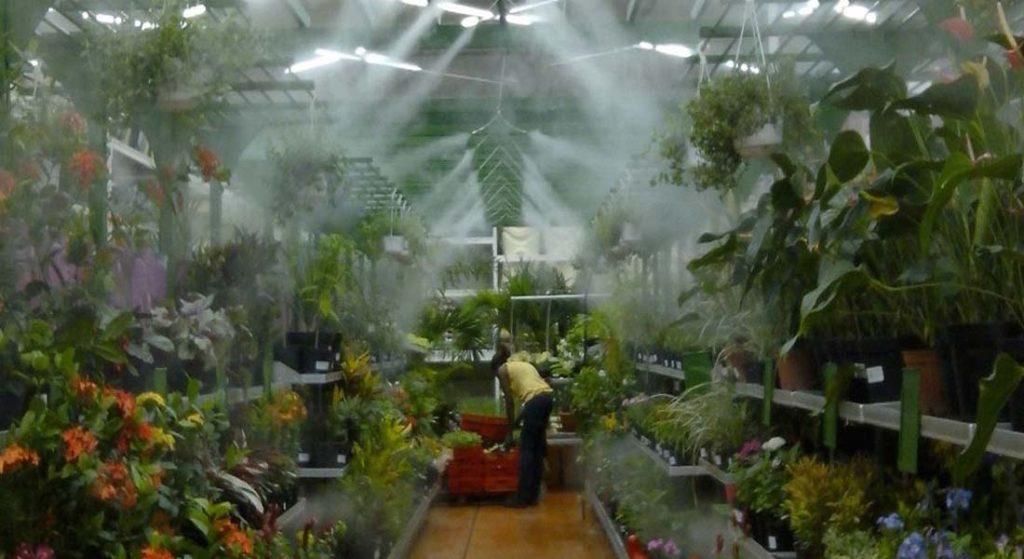 hệ thống tưới phun sương