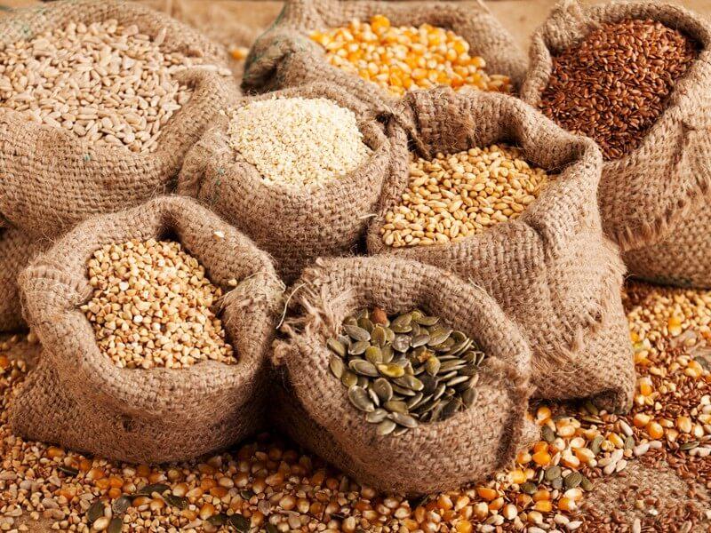 Tầm quan trọng của việc mua hạt giống chất lượng