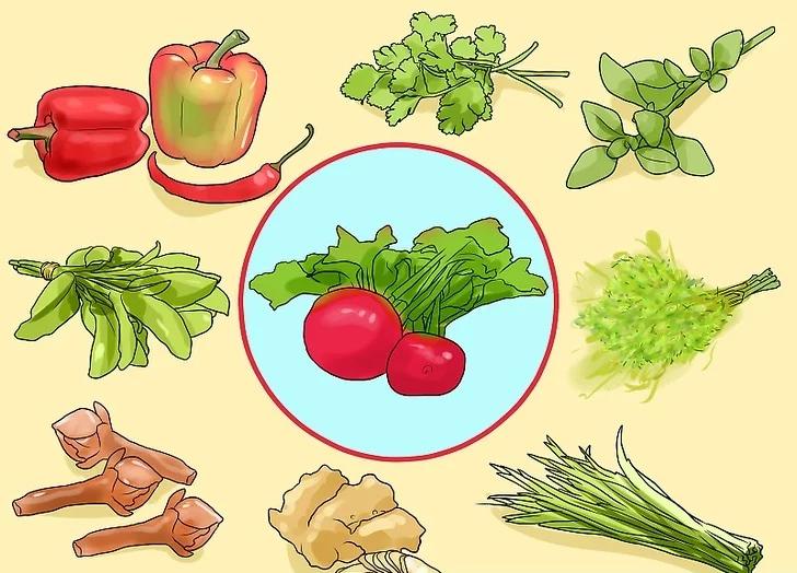 các loại rau gia vị dễ trồng
