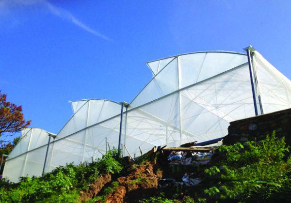 Nhà lưới kiểu lắp ghép trống gió trên mái
