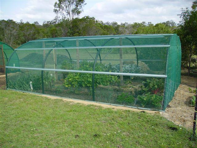 Hướng dẫn làm nhà lưới trồng rau tại nhà