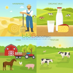 agriculture flat compositions 1284 34254 1