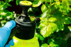 pesticide treatment garden flowers trees plants 115919 72 1