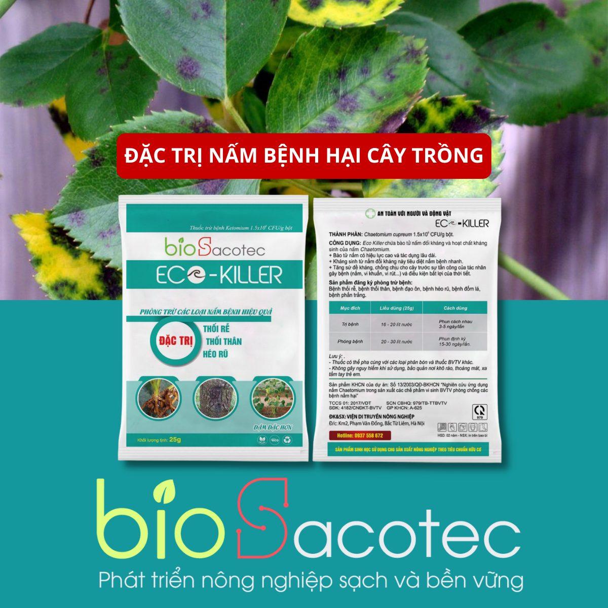 Eco Killer 25 - Thuốc đặc trị thối rễ, thối thân, héo rũ, đốm lá, phấn trắng
